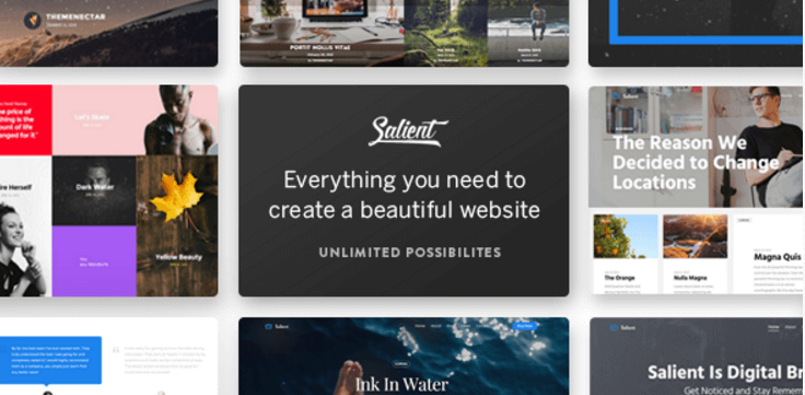 Salient - Los mejores themes WordPress