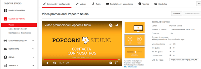 descargar videos de youtube sin programas online