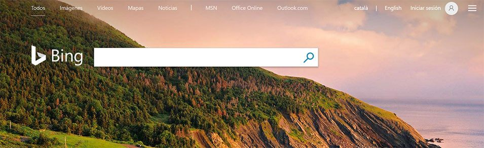 Bing, the Microsoft search engine