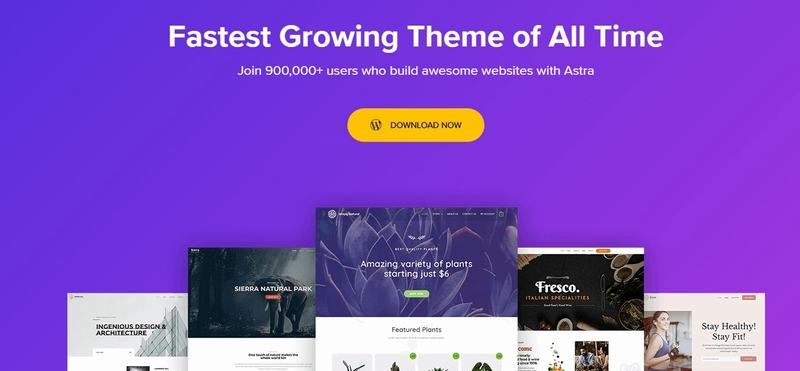 Astra - best WordPress templates